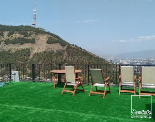 flat ( apartment ) For Rent  In Tbilisi , Mtatsminda; Kojori New Road